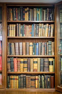 Nineteenth century rare books